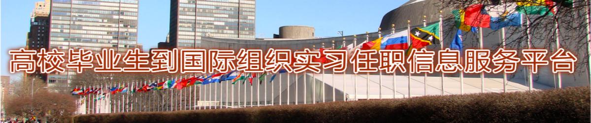 国际组织任职
